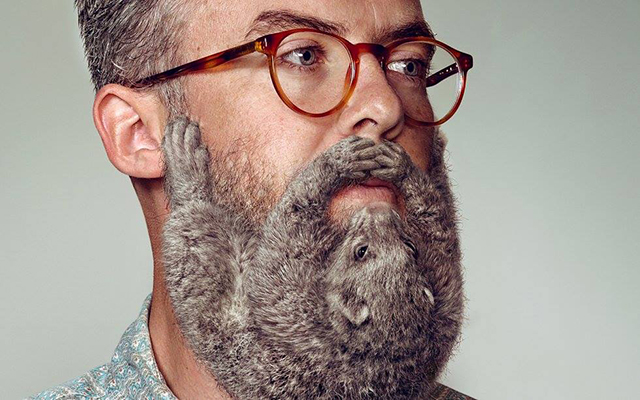 possum beard