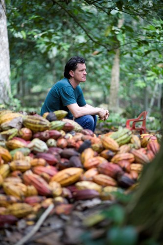 Willies Cacao Farm