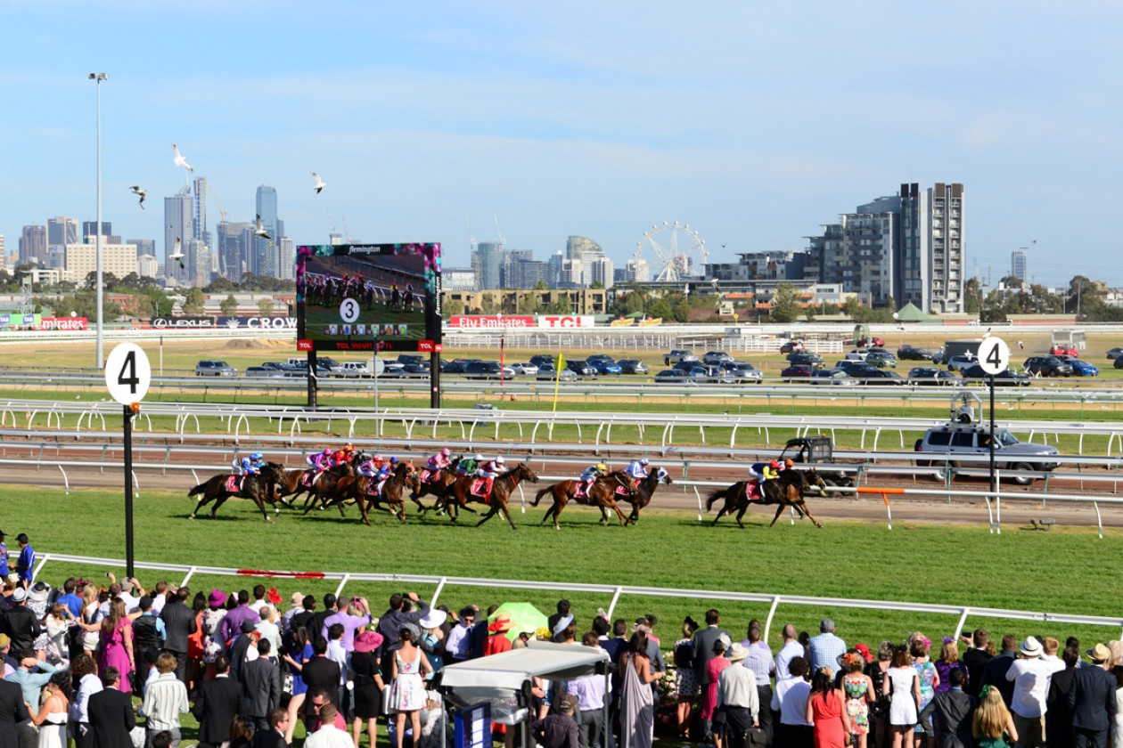 16 Fun Facts About Melbourne Cup To Honour Our Unofficial