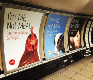 #claphamcommon tube takeover #govegan #friendsnotfood YES! ??