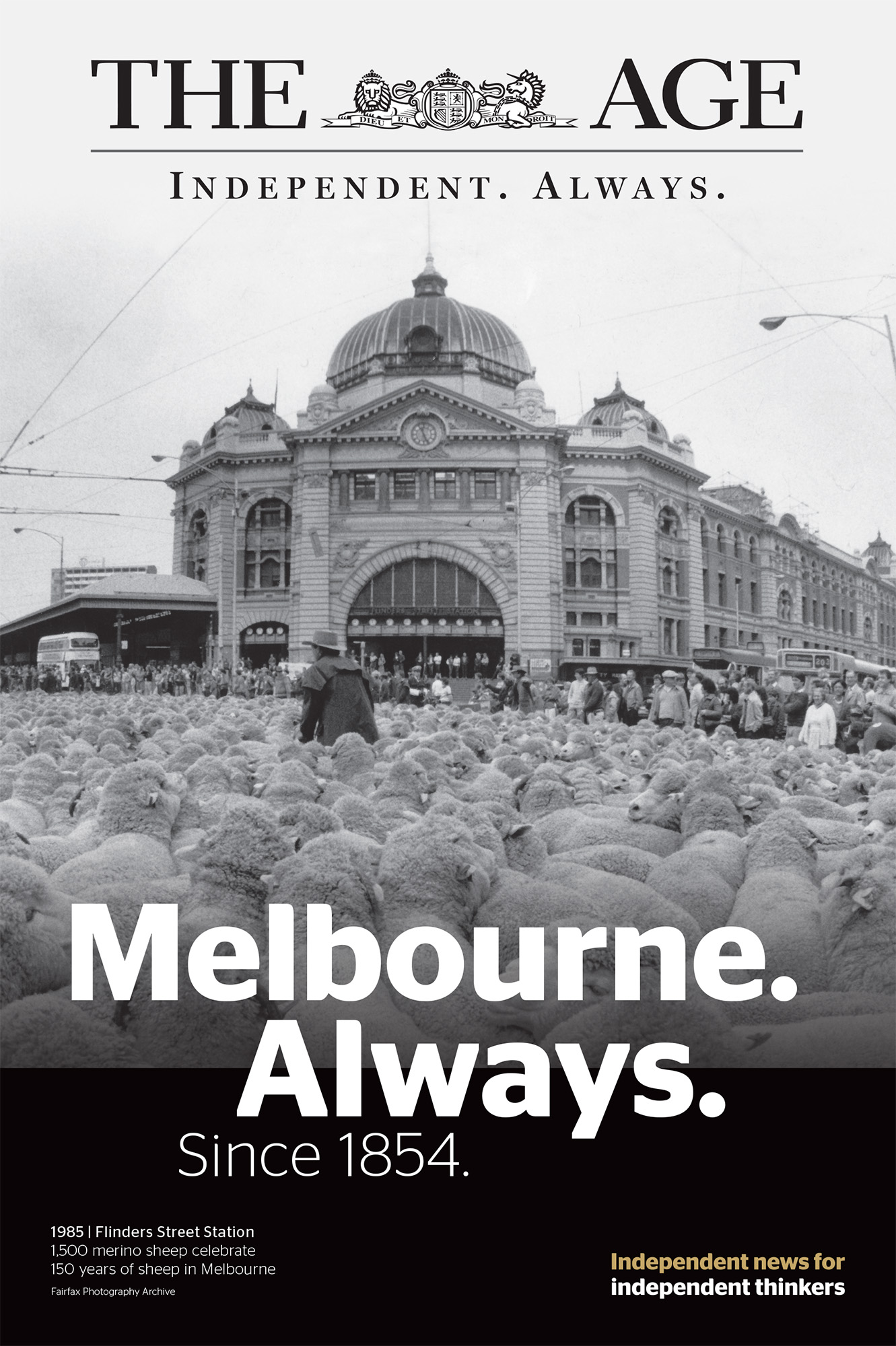 Fairfax_Always_Melbourne_Flinders Sheep