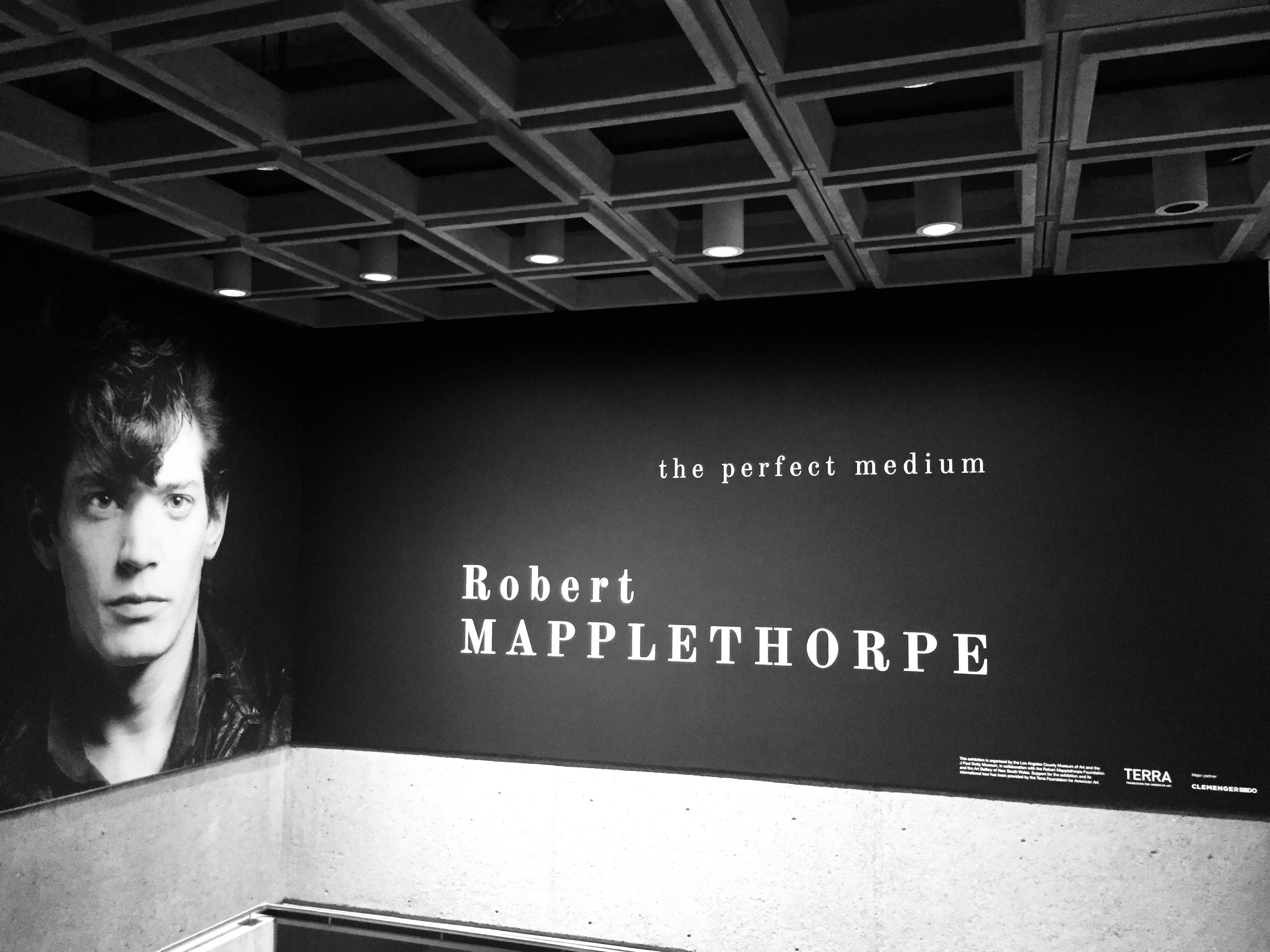 Robert Mapplethorpe_The Perfect Medium_
