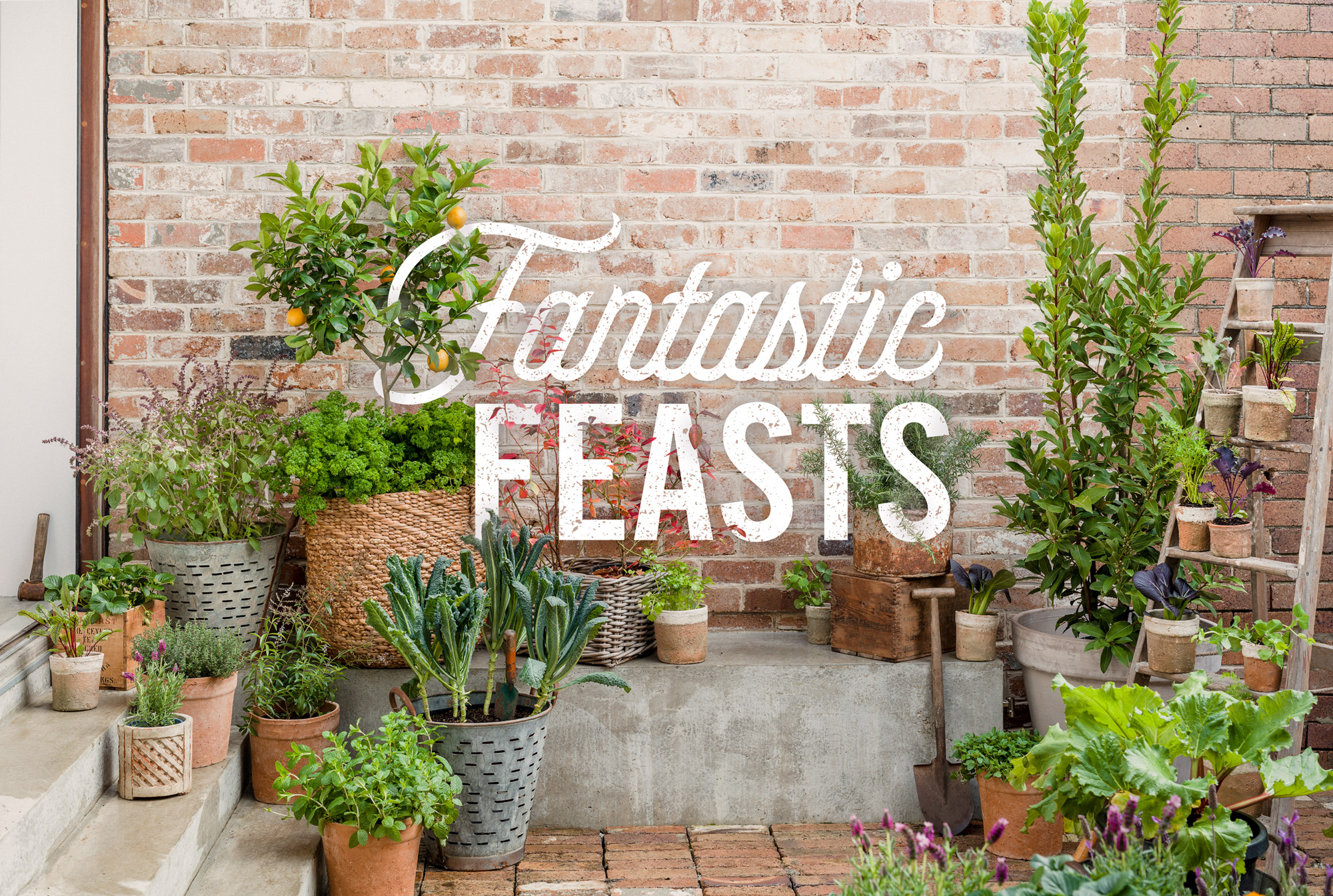 Fantastic-Feasts---Photo-by-Daniel-Shipp