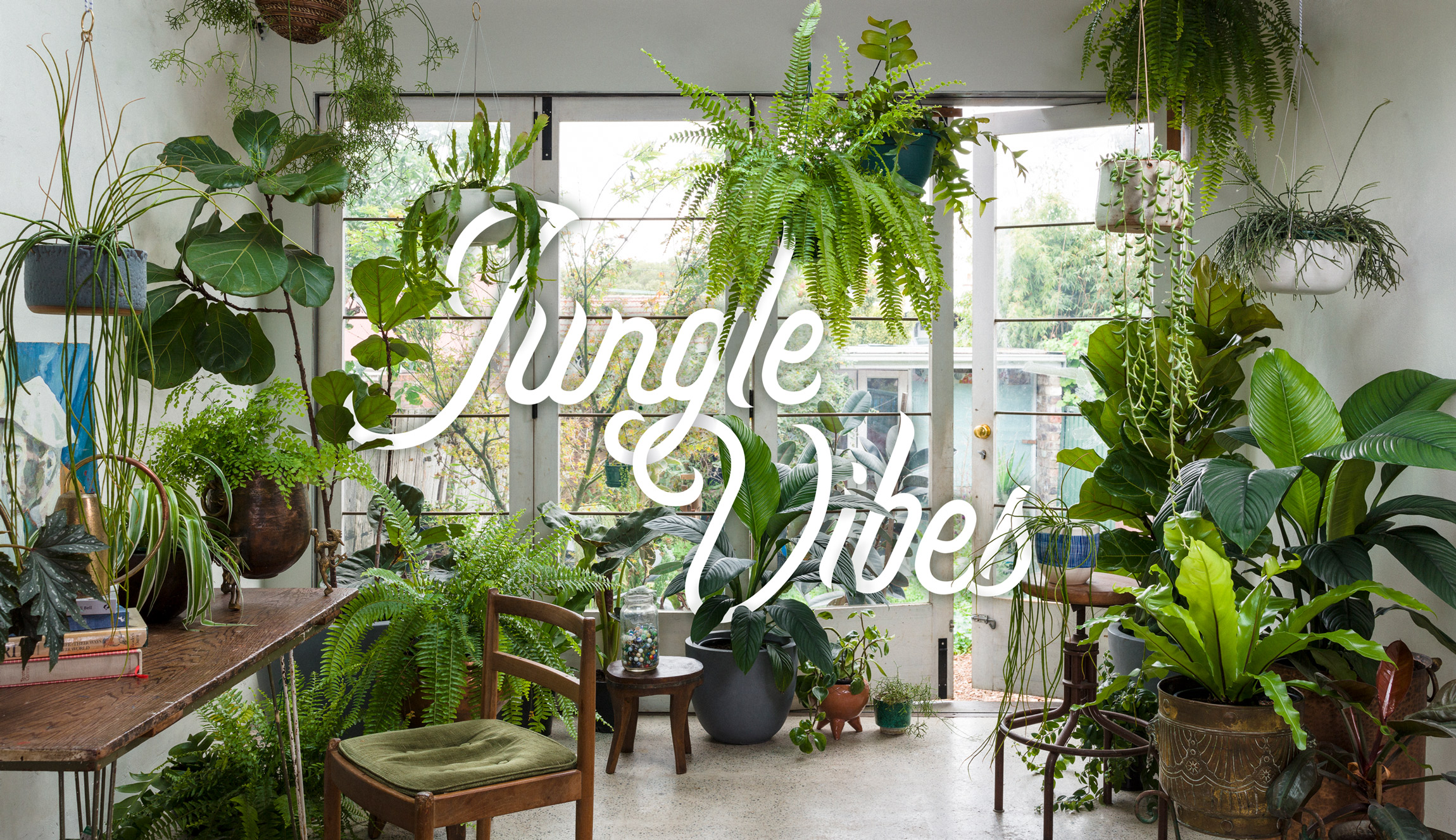 Jungle-Vibes----Photo-by-Daniel-Shipp