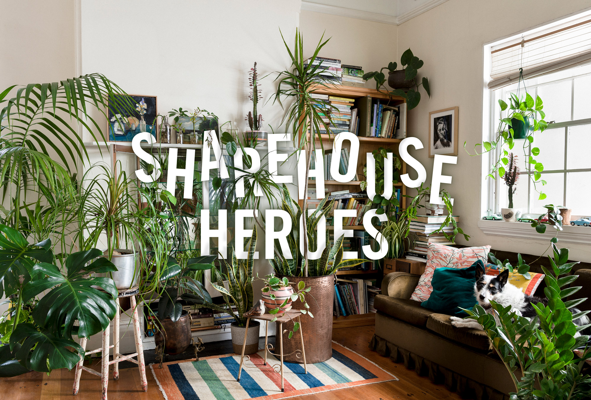 Sharehouse-Heroes----Photo-by-Daniel-Shipp