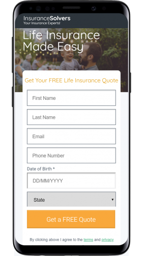 Insurance Solvers (Impelus)