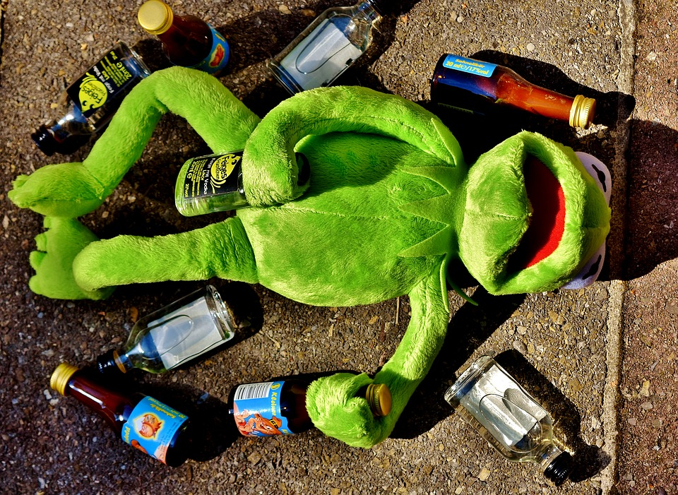 Artificial Intelligence Is Like Letting 17-Year-Olds Loose ...Kermit Drinking Wine