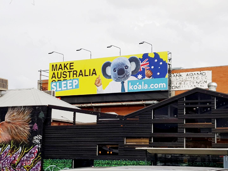 Koala _ Clive