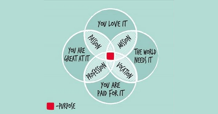 Embracing Our Ikigai: How A Japanese Philosophy Can ...
