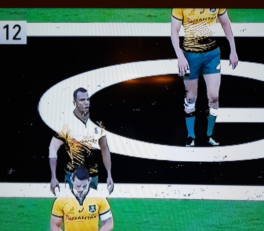 Bledisloe Fans Fume As On-Field CGI Ads Make Game Virtually Unwatchable