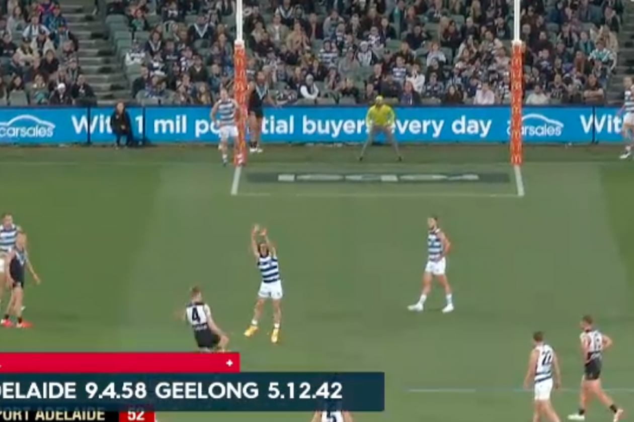 Thursday Tv Wrap Geelong Cats Port Adelaide Afl Final Scores Massive Points For Seven B T